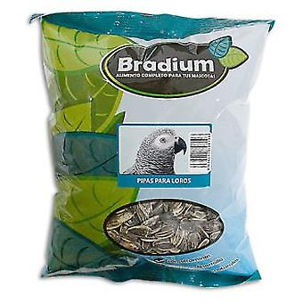 Bradium Bradium 8Kg Bulk Pipes For Parrots (Birds , Bird Food)