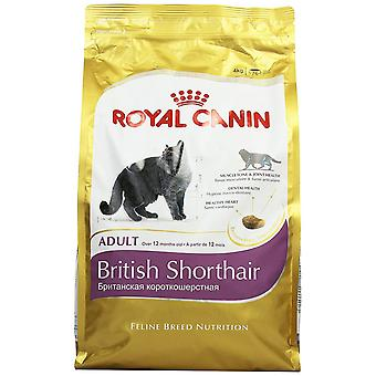Royal Canin chat nourriture British Shorthair Dry Mix 4 kg