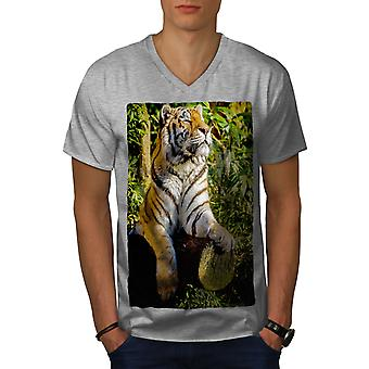 Tiger Sunshine Animal Men GreyV-Neck T-shirt | Wellcoda