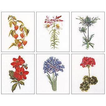 Floral Studies 2 On Linen Counted Cross Stitch Kit-6.75