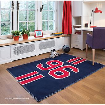 Tapis de pitch