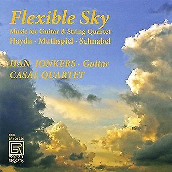Haydn / Jonkers / Casal kvartetten - fleksibel Sky - musik for Guitar & Strygekvartet [CD] USA import
