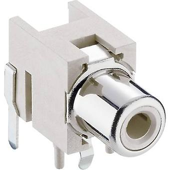 RCA connector Socket, horizontal mount White Lumberg 1553 02 weiss 1 pc(s)