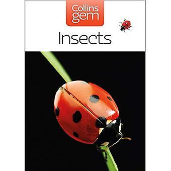 Insetos (Collins GEM)