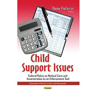 Child Support Issues (Childrens Issues Laws and Program)