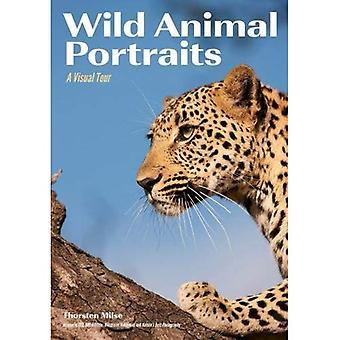 Wild Animal Portraits: A Visual Tour