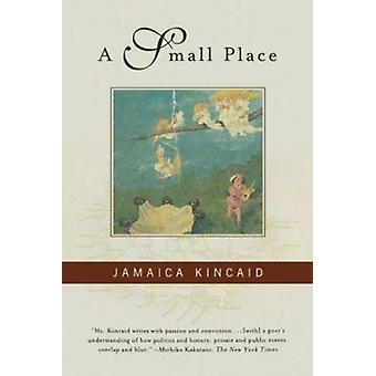 A Small Place Book