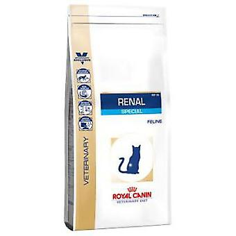 Royal Canin Renal Special (Cats , Cat Food , Dry Food)