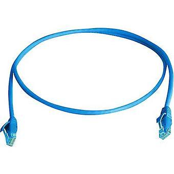 Telegärtner RJ45 Networks Cable CAT 6 U/UTP 0.5 m Blue Flame-retardant, Halogen-free