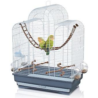 Fiona Trixder cage birds (birds, cages and aviaries)