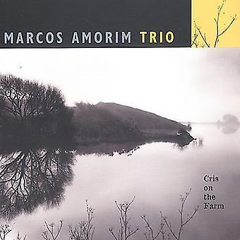 Marcos Amorim - Cris on the Farm [CD] USA import