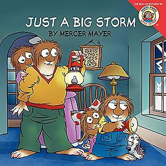 Kleine ventje: Gewoon een grote Storm (kleine ventje
