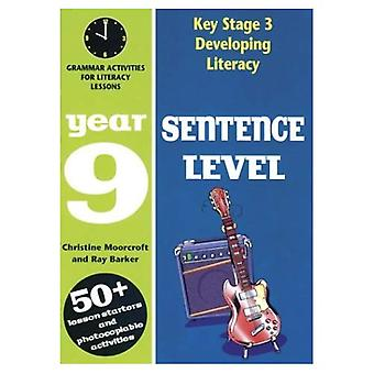 Developing Literacy: Sentence Level: Grammar Activities for Literacy Lessons: Year 9 (Developings)
