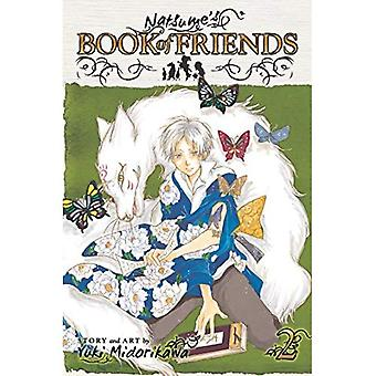 Natsume's Book of Friends, Volume 2