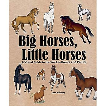 Big Horses, Little Horses: A Visual Guide to the World's Horses and Ponies (Big and Little)