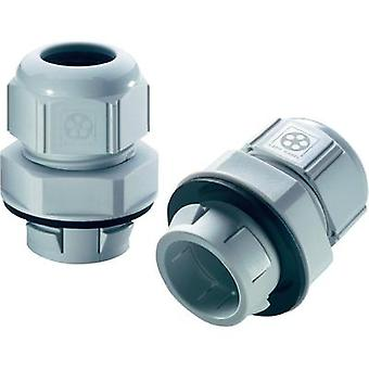 Cable gland M32 Polyamide Light grey (RAL 7035)