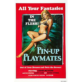 Pin-Up Playmates nos cartel Janie Meyers 1972 película cartel Masterprinter