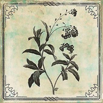 ジェイス灰色によって接されたステンシル花ポスター印刷