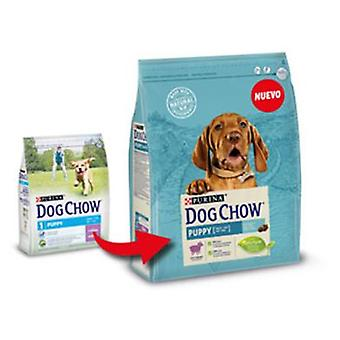 Dog Chow Puppy with Lamb (Dogs , Dog Food , Dry Food)