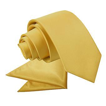 Goud platte satijnen stropdas & zak plein voor jongens instellen