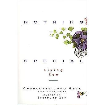 Nothing Special: Living Zen