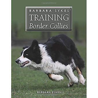 Barbara Sykes opleiding Border Collies