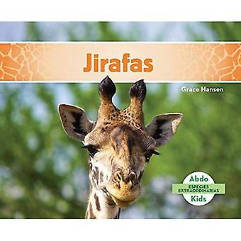 Jirafas (Giraffes) (Especies� Extraordinarias (Super Species))
