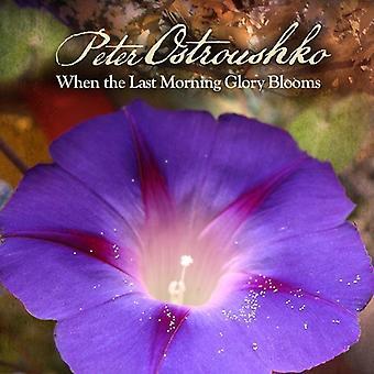Peter Ostroushko - når den sidste Morning Glory blomstrer [CD] USA import