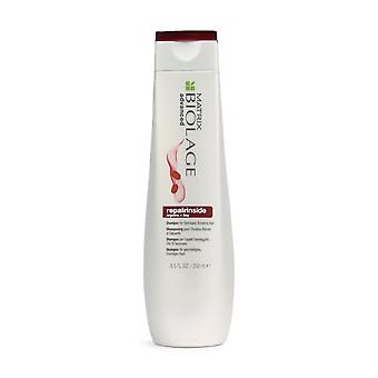 Matrix Biolage Advanced Repair in Shampoo 250ml