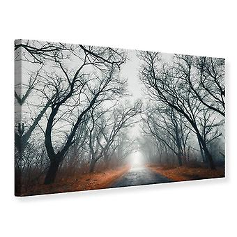 Canvas Print Mysterious Mood In The Forest