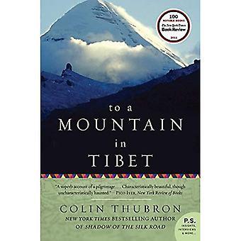 Auf einen Berg in Tibet