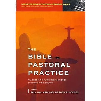 The Bible in Pastoral Practice