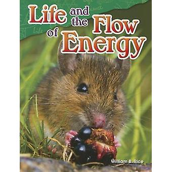 Life and the Flow of Energy (Grade 5) by William B Rice - 97814807471