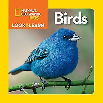 Nacional Geographic crianças olhar e aprender: aves (olhar & aprender) (olhar & aprender) [livro de placa]