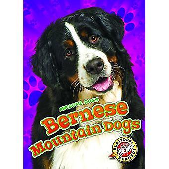 Bernese Mountain Dogs by Rebecca Sabelko - 9781626177390 Book