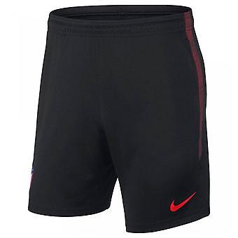 2019-2020 Atletico Madrid Nike Training Shorts (Black)