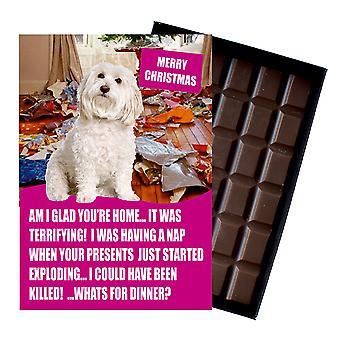 Bichon Frise grappige kerstcadeau voor hond minnaar boxed chocolade wenskaart xmas aanwezig