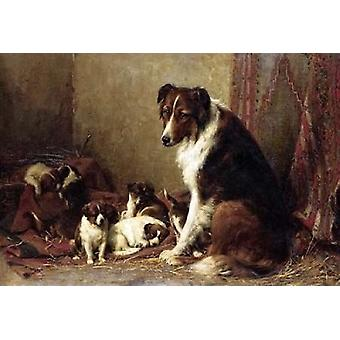 A Collie With Her Puppies Poster Print by  Otto Eerelman