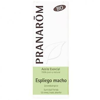 Pranarom Essential Oil Espliego Male Bio