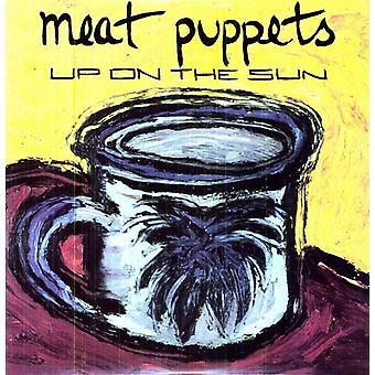 Meat Puppets - upp på Sun [Vinyl] USA import