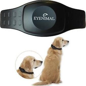Eyenimal Gps Dog Tracker (Dogs , Collars, Leads and Harnesses , Collars , Accessories)