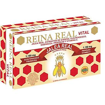 Robis Real Vital Queen 30 Ampoules