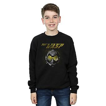 Marvel Boys Ant-Man And The Wasp Hope Mask Hexagon Sweatshirt