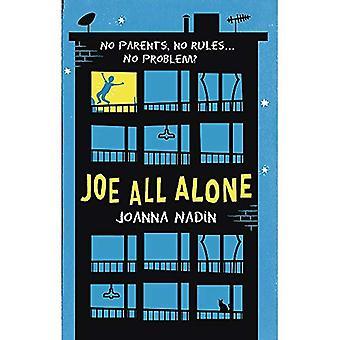 Joe All ensam (lilla bruna unga läsare)