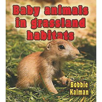Baby Animals in Grassland Habitats by Bobbie Kalman - 9780778777403 B