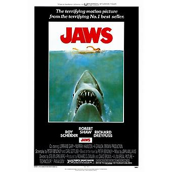 Jaws Movie Poster Print (27 x 40)
