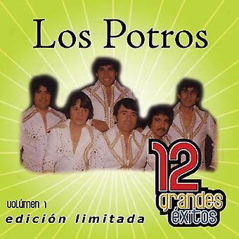 Los Potros - Los Potros: Vol. 1-12 Grandes Exitos [CD] USA importar