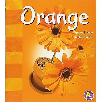 Orange: Seeing Orange All Around Us (A+ Books: Colors)