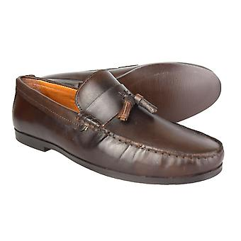 MOCASSINI di pelle marrone Woodcroft burocrazia Driving Shoes