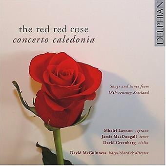 Concerto Kaledonien - rød rød Rose [CD] USA importerer